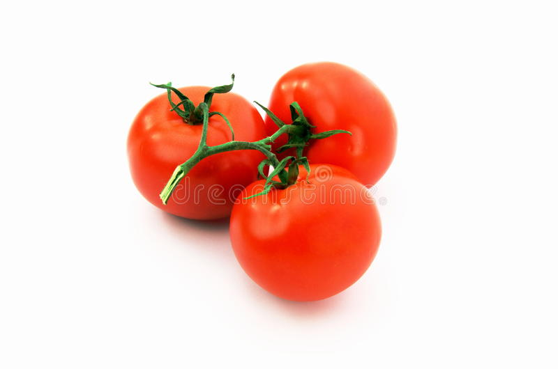 Ripe red tomatoes stock photography