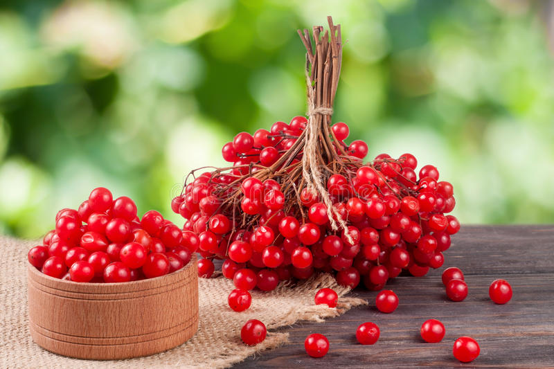 Download Ripe Red Viburnum Berries In A Wooden Bowl On Table With Blurred Garden Background Stock Photo - Image: 83718971