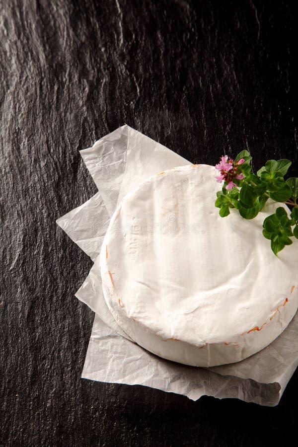 Ripe soft creamy round of Camembert cheese royalty free stock photo