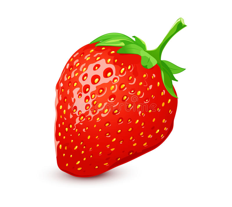 Download Ripe strawberry stock vector. Illustration of nature - 23108785