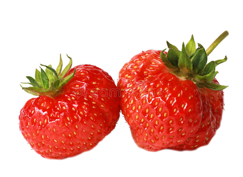 Ripe strawberry isolated on a white background stock images
