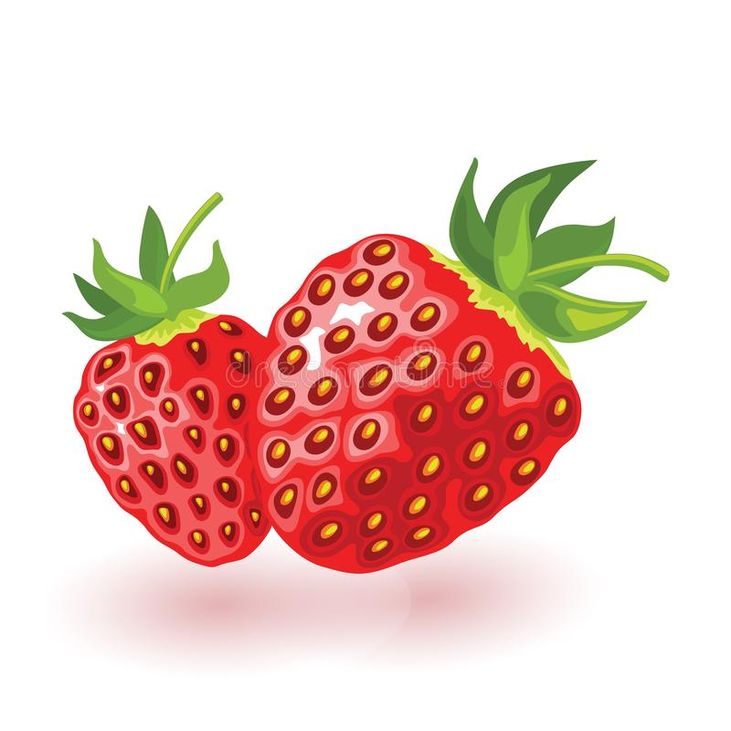 Ripe strawberry with leaves. Two sweet red berries. Cartoon vector icon isolated on white. stock illustration