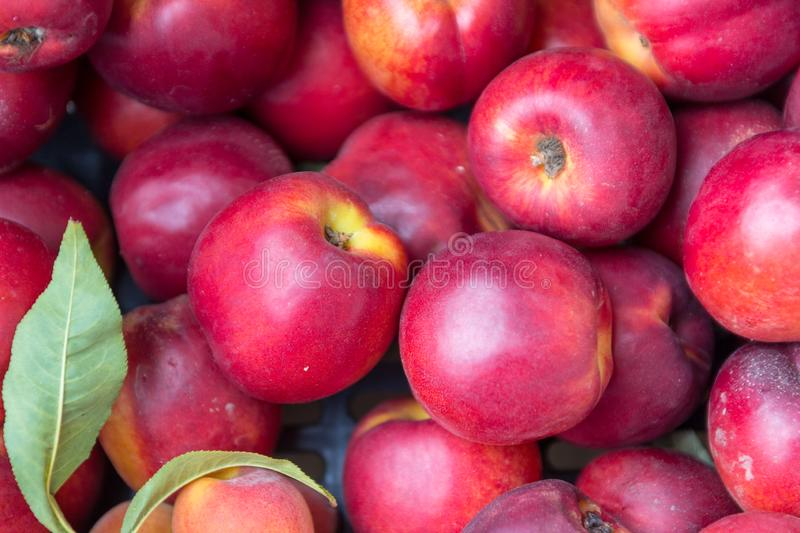 Ripe sugar sweet nectarines peaches at a crate on stand at the marketplace.  stock photos
