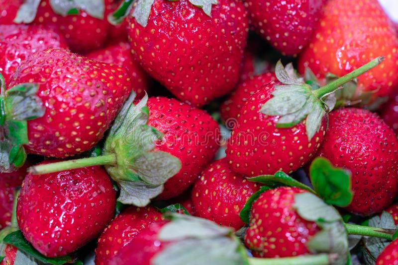 Ripe sweet strawberries. Ripe red sweet strawberries with leaves royalty free stock images