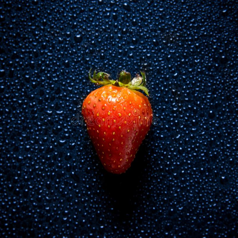 Ripe and tasty looking strawberry close up shot with water droplets creating texture royalty free stock image