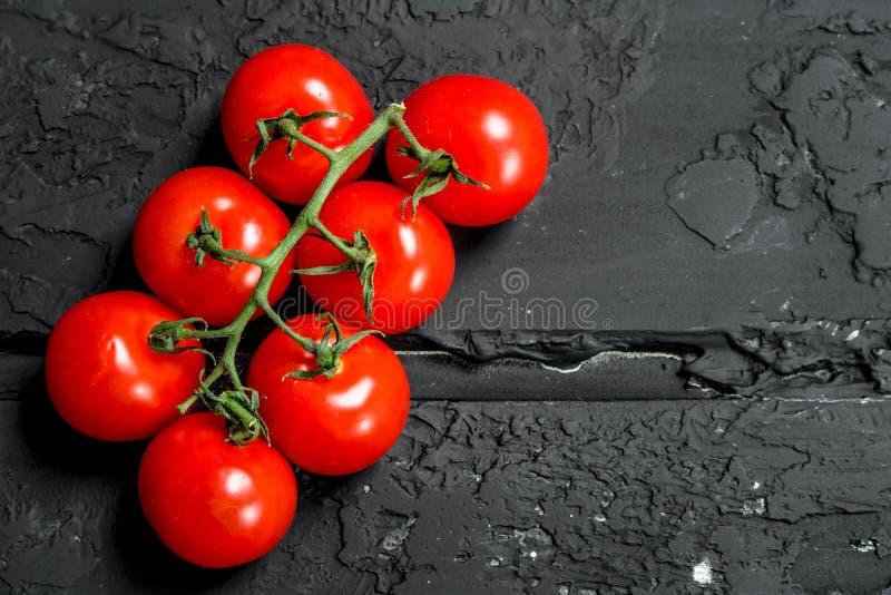 Ripe tomato branch stock image
