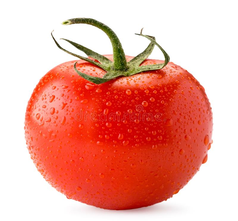Ripe tomato in water drops close up on a white. Isolated. stock images