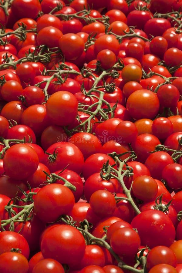 Ripe tomatoes background stock photo