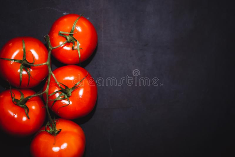 Ripe tomatoes on a dark background, royalty free stock images