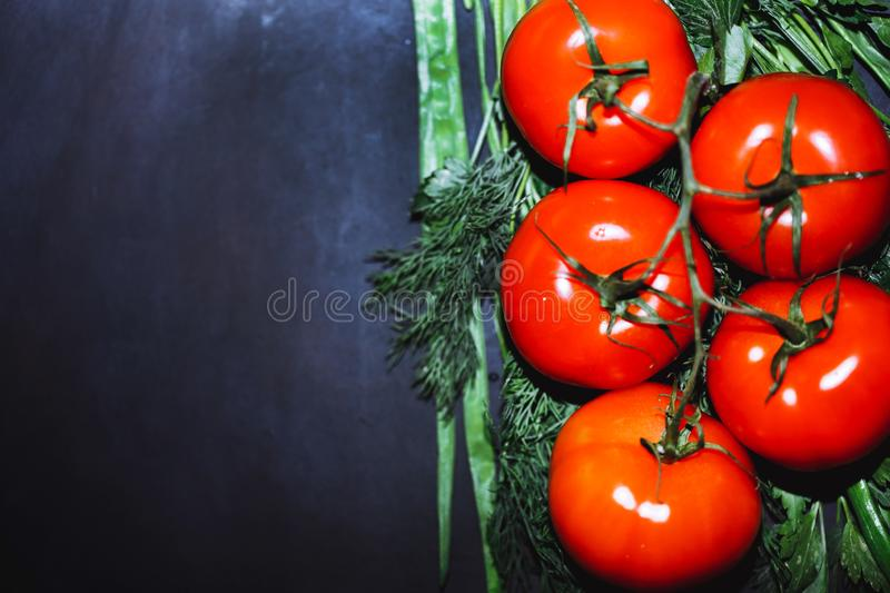 Ripe tomatoes with herbs on black background. stock photos
