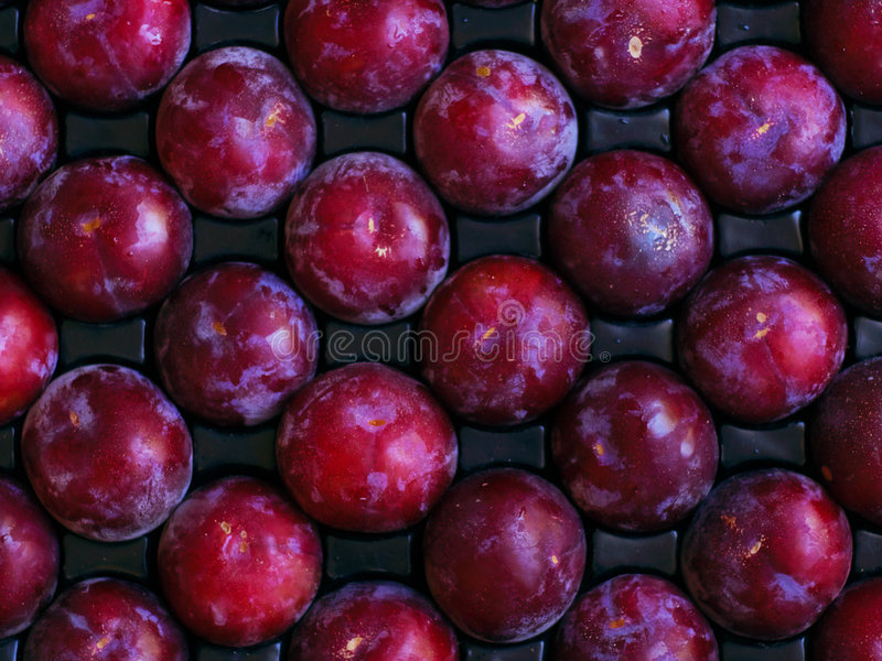Ripe, tree-fresh fruit ready for shipping or consumption stock images