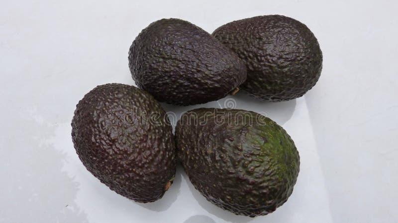 Avocados on white background royalty free stock image