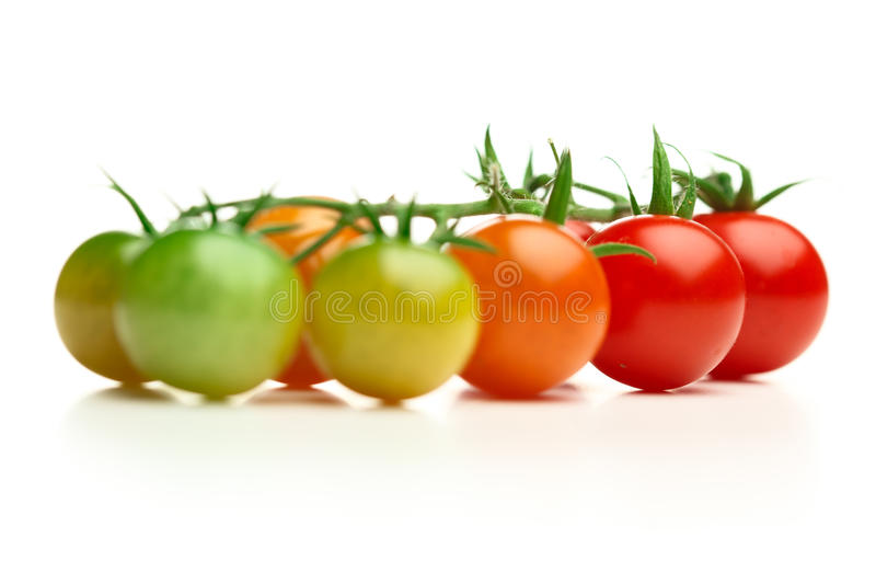 Ripe and unripe cherry tomatoes. Isolated on white stock photography