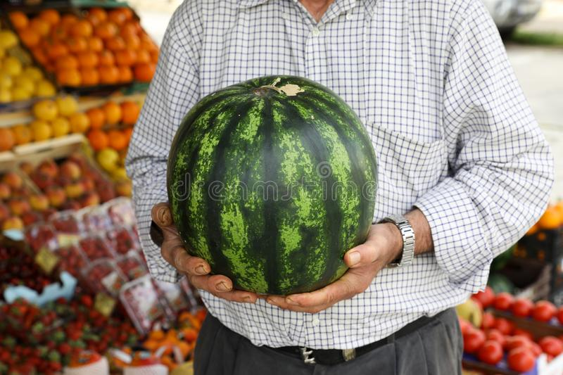 Ripe watermelon in the hands of the seller of the greek vegetable fruit shop royalty free stock image