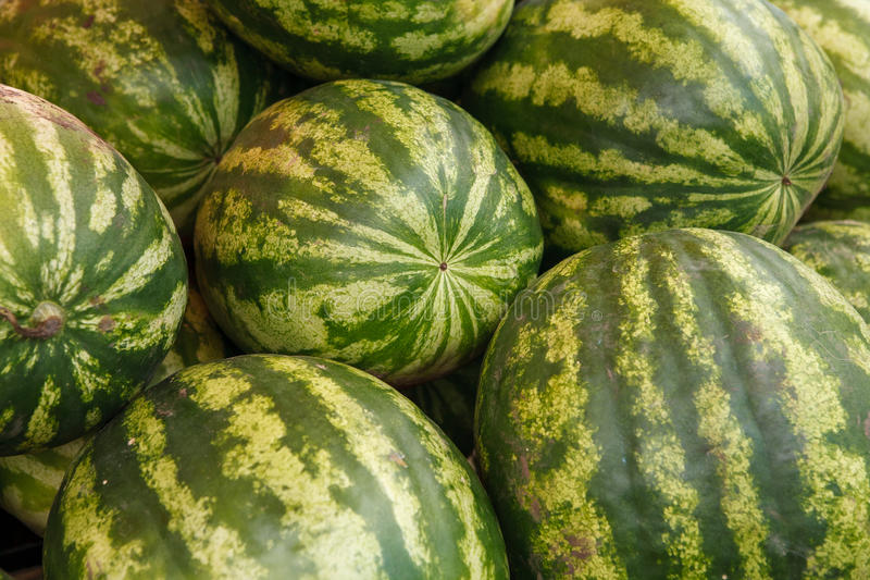 Ripe watermelons royalty free stock photos