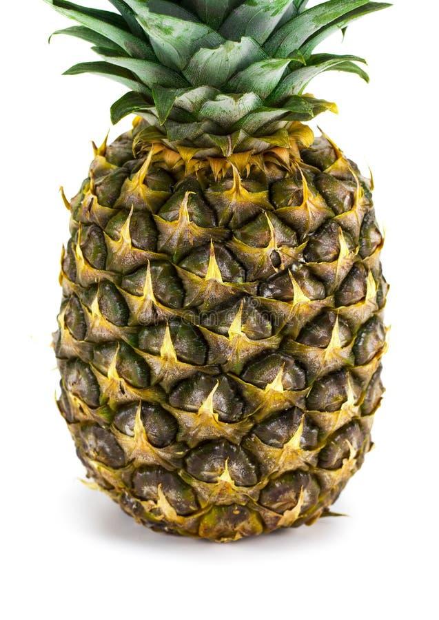 Ripe whole pineapple isolated on white background royalty free stock image