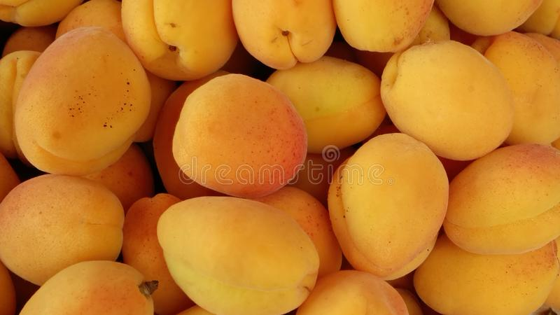 Ripe yellow apricots, sweet fruits lie in a pile royalty free stock photos
