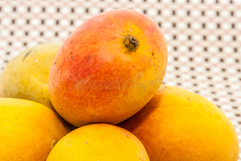 Ripe yellow and red colored mango fruits on mat background. Ripe yellow and red colored mango fruits on brown check mat background stock photo