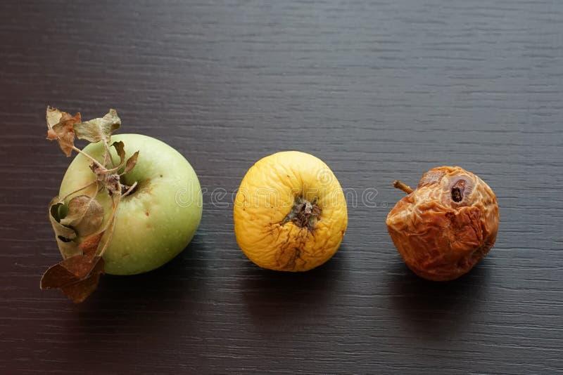 Ripeness Diffent του μήλου στοκ εικόνες