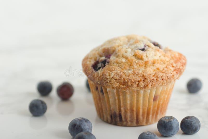 Ripiano blu di Berry Muffin On White Marble con i mirtilli freschi immagini stock libere da diritti