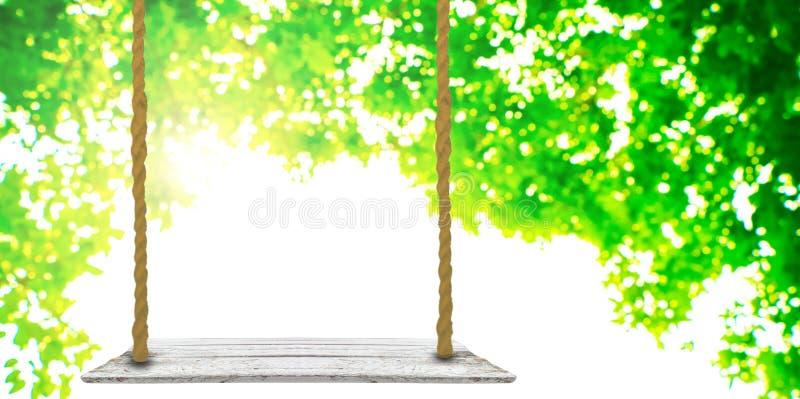 Ripiano del tavolo di legno con il fondo vago della natura fotografia stock libera da diritti