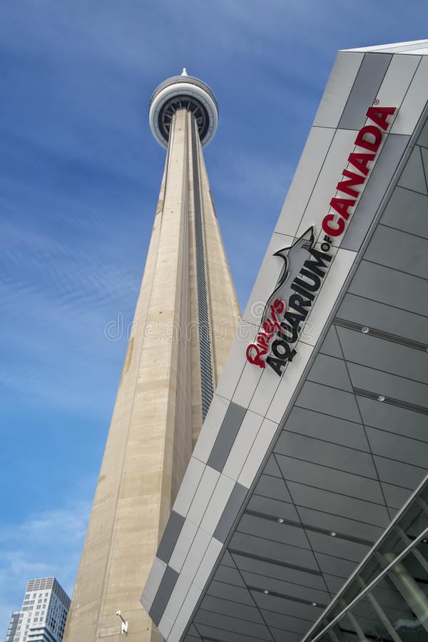 Ripley's-Aquarium von Kanada stockfotos