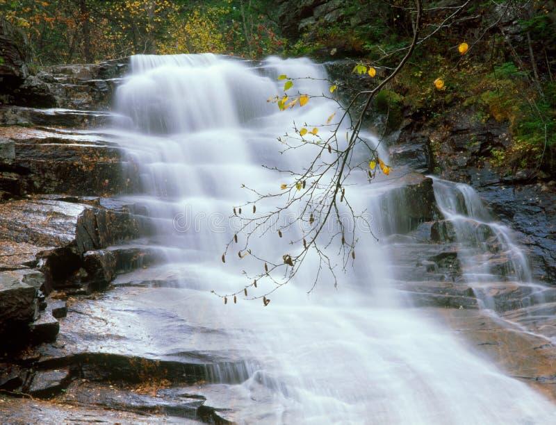 Ripley Falls Horizontal, Arethusa-Ripley Falls Trail, Crawford Notch State Park, New Hampshire fotografia de stock