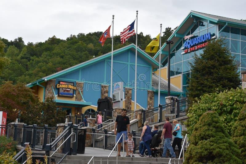 Ripley` s Aquarium van Smokies in Gatlinburg, Tennessee royalty-vrije stock foto