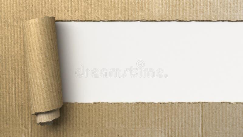 Ripped cardboard vector illustration