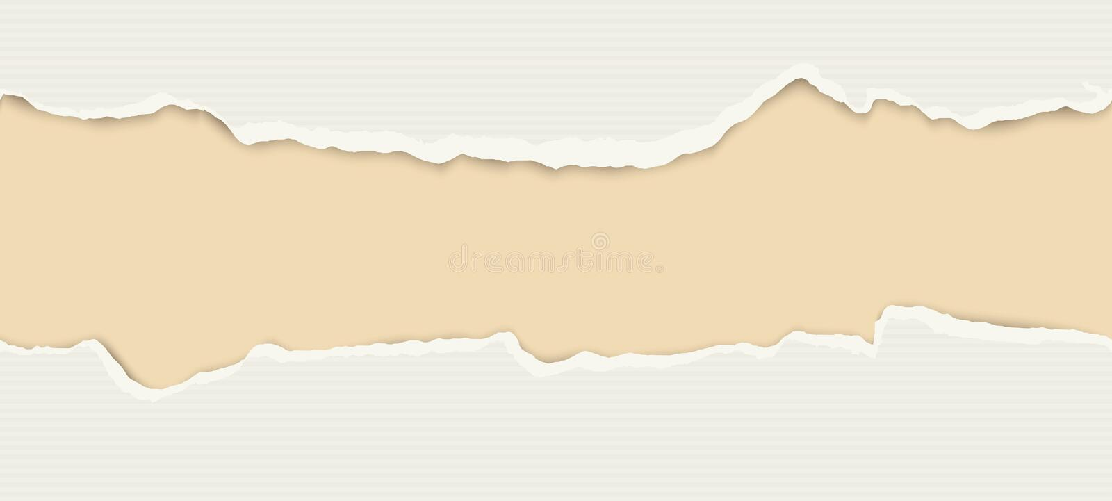 Ripped open paper. Upper and lower part of ripped open lined paper colored gray vector illustration