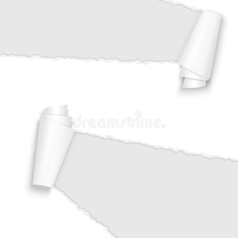 Ripped open paper white. Vector of ripped open paper colored white stock illustration