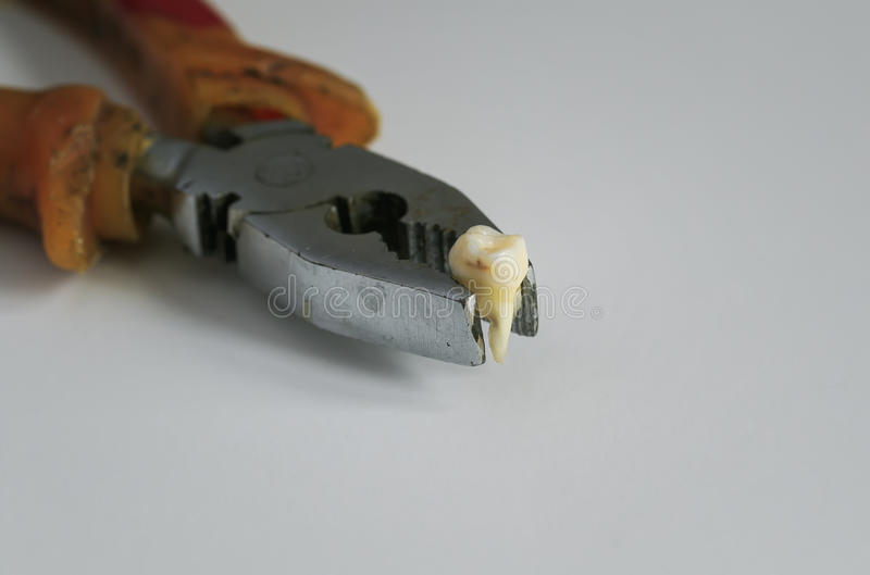 Ripped out a rotten tooth in an old rusty pliers royalty free stock photos
