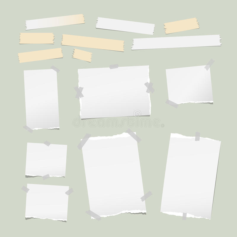 Ripped white note, notebook, copybook paper strips, sticky, adhesive tape, stuck light green background. Ripped white note, notebook, copybook paper strips royalty free illustration