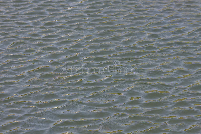 Ripple Of Water Royalty Free Stock Images