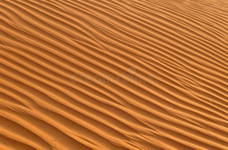 Download Rippled sand stock photo. Image of patterned, undulating - 14369752