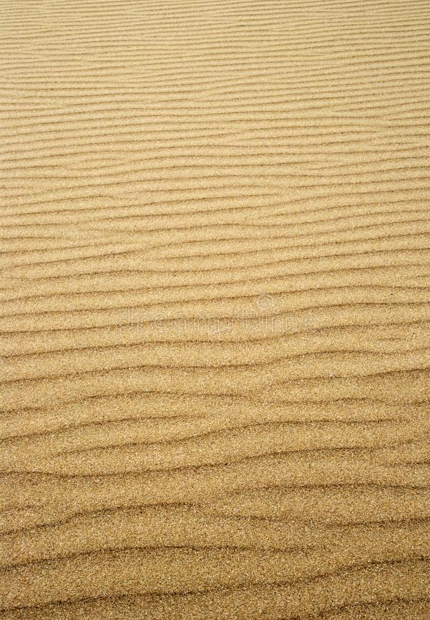 Rippled sand stock photography