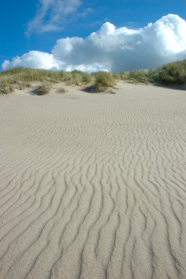 Download Ripples on the beach stock photo. Image of dune, heaven - 523930