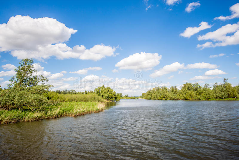 Rippling water surface in a wide Dutch creek royalty free stock photography