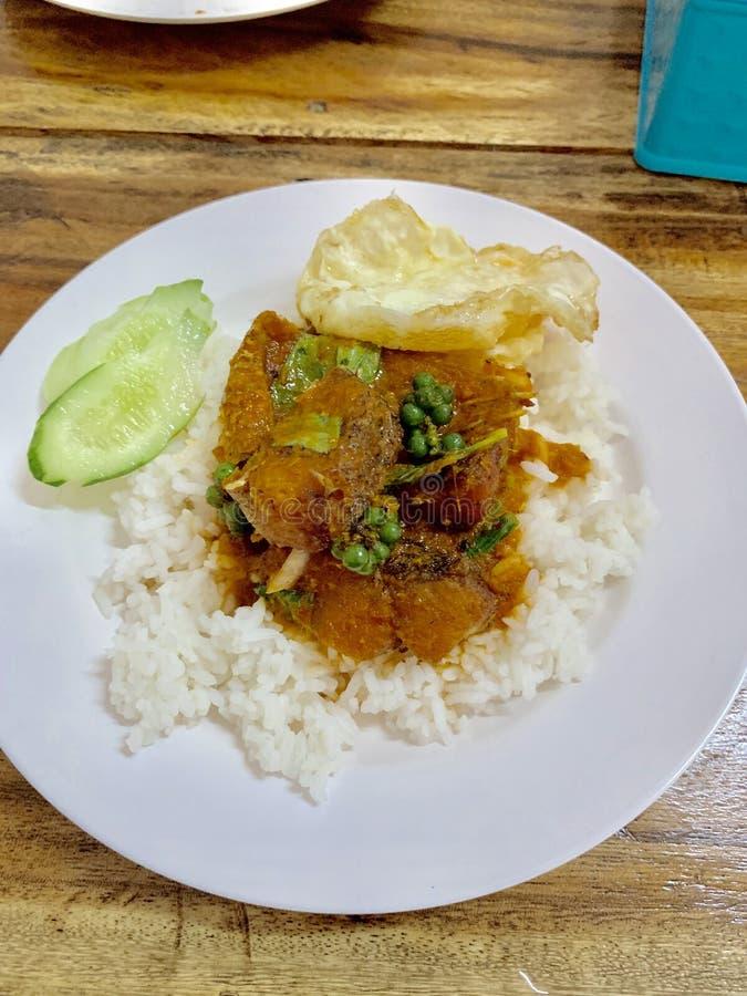 Ris med fiskcurry royaltyfri fotografi
