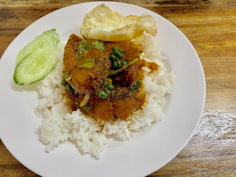 Ris med fiskcurry royaltyfria foton