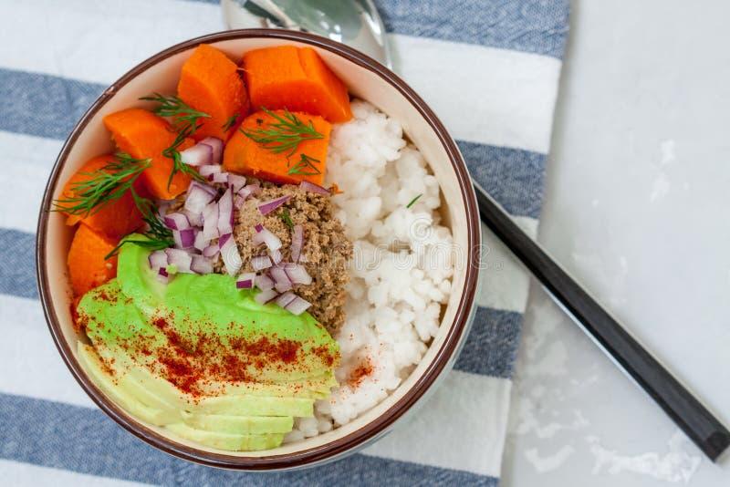 Ris med sötpotatis-, kött- och grönsakpate royaltyfri fotografi