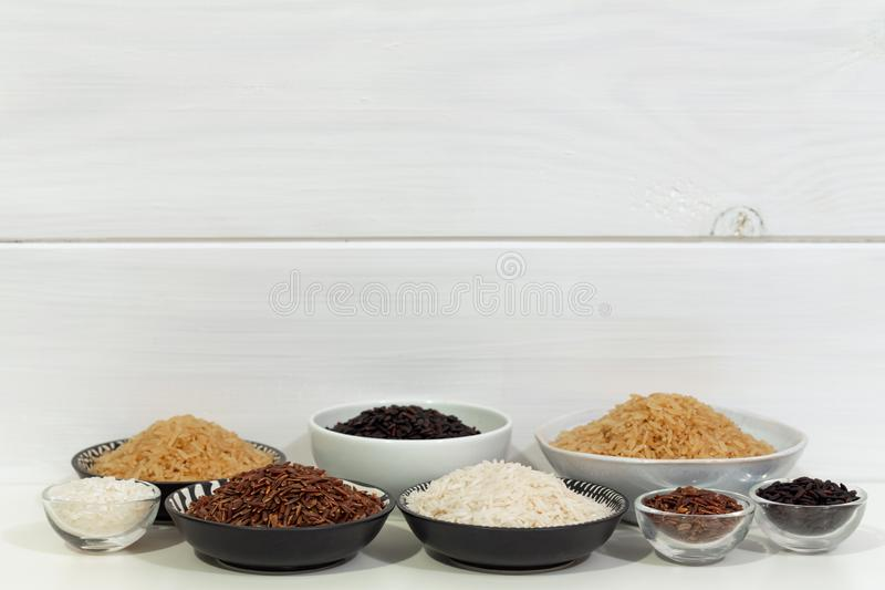 Ris olika variationer av rå ris royaltyfri fotografi