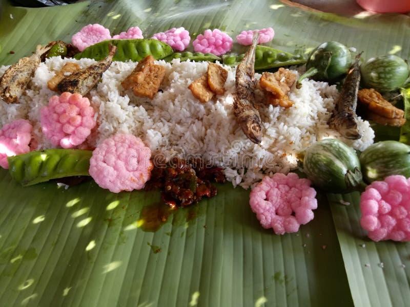 Ris saltad fisk royaltyfri fotografi