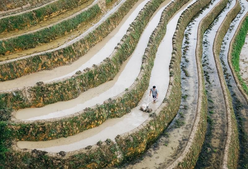 Ris terrasserar, det Yaoshan berget, Guilin, Kina arkivbild