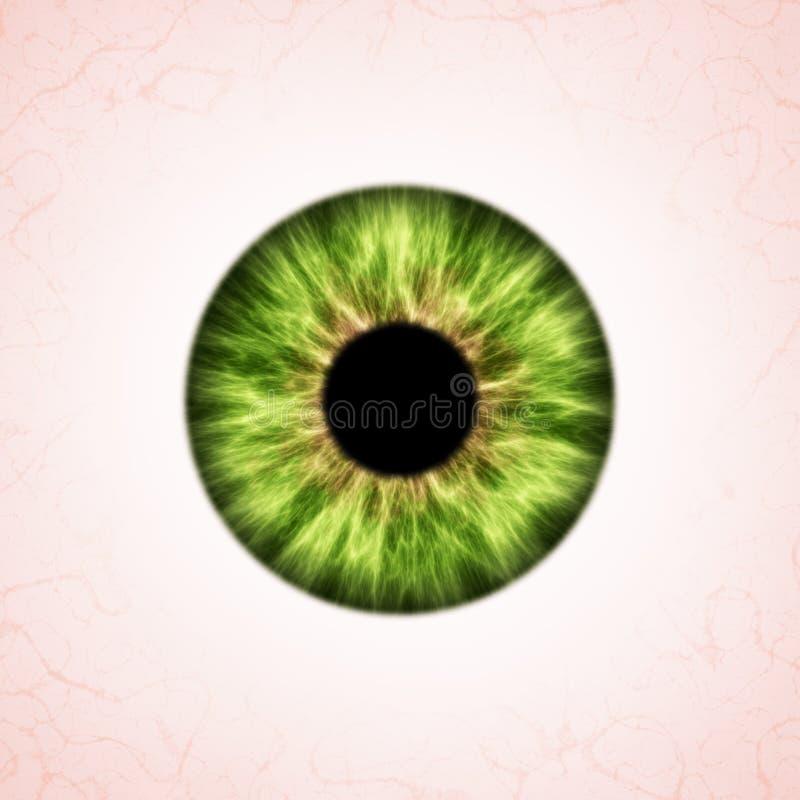 ?ris verde ilustração royalty free