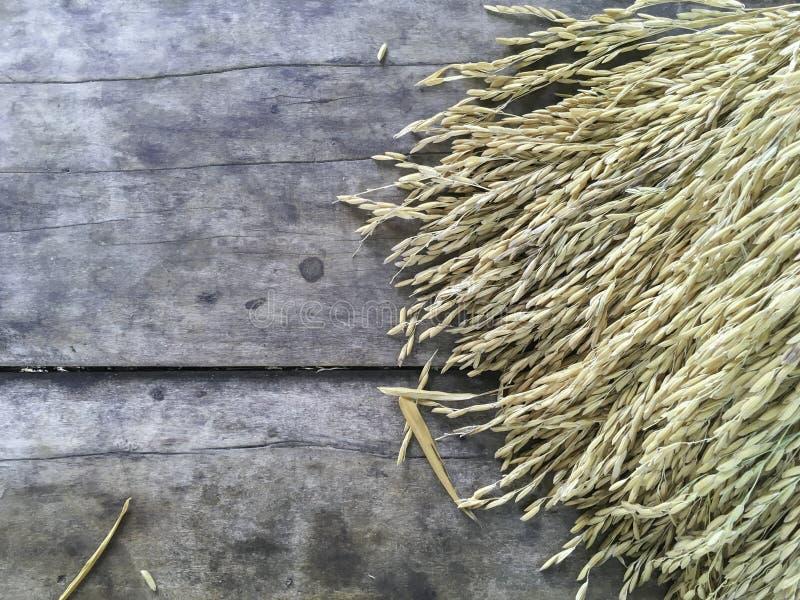 Risaia cruda asciutta sulla vecchia superficie di legno della destra nella vista superiore immagini stock
