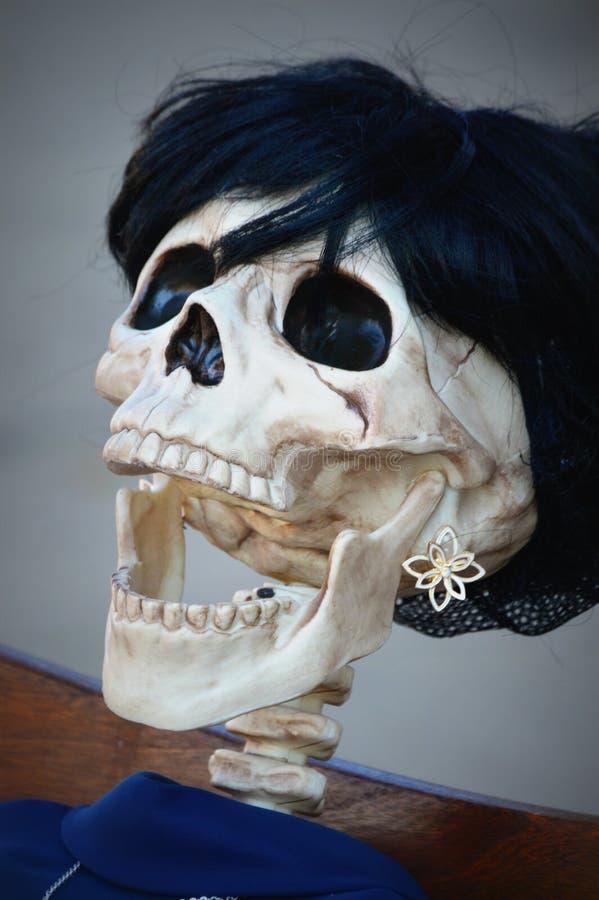 Risata di scheletro fotografia stock libera da diritti