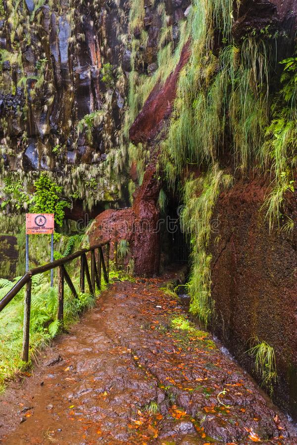 Risco levada in Madeira Portugal. Travel background stock images