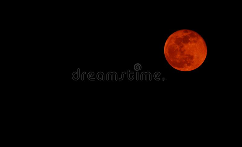 Rise of the blood moon. Rise of the blood moon during total lunar eclipse. Moon is at upper right corner in black sky with space left for text royalty free stock images
