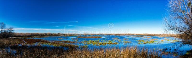 Riserva del cittadino del fiume San Joaquin immagine stock libera da diritti